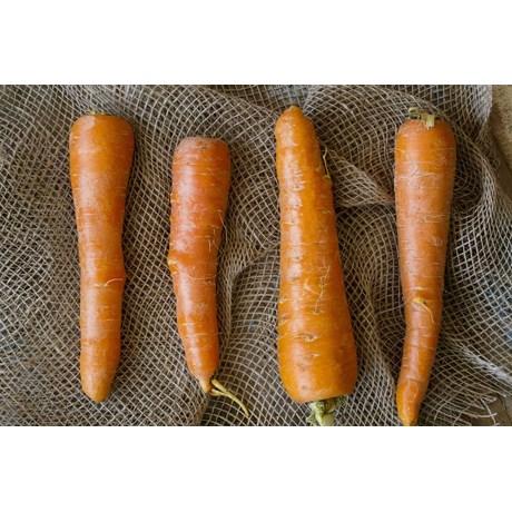 Cenoura - 500 Gramas